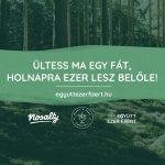 Együtt ezer fáért! – Elstartolt a Nosalty és a Plant A Tree Cocktail közös kampánya